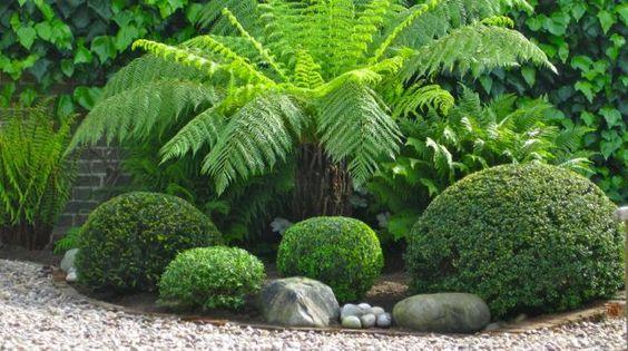 A Very Green Garden